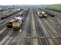 Class 60 and 66's Tees yard 2005