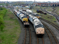 Stored 37's Thornaby shed 2005