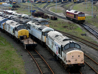 37's and 56's in storage. Thornaby shed 2005